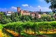 canvas print picture - Romantic vine route with medieval castles in Italy. Emiglia Romagna region, Levizzano village