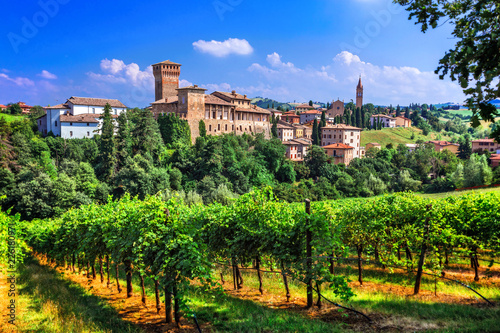 Romantic vine route with medieval castles in Italy. Emiglia Romagna region, Levizzano village