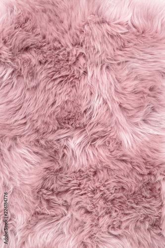 Fotografering Sheep fur pink sheepskin rug background