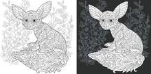 Fenec Fox. Coloring Page. Coloring Book.