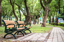 Park, A Chair In The Park, Rel...