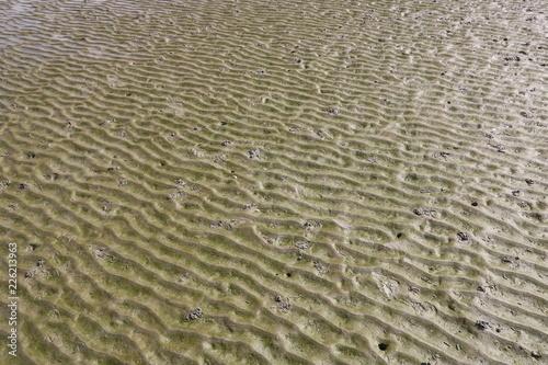 Tablou Canvas Meeresboden im Wattenmeer der Nordsee bei Ebbe