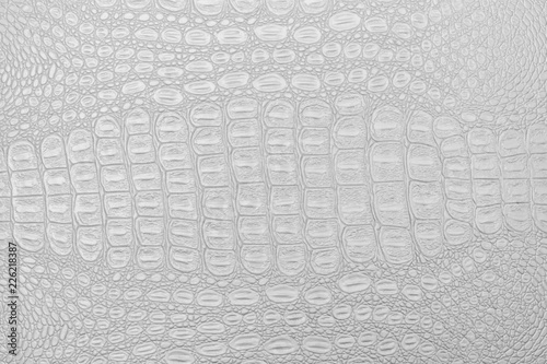 Photo Monochrome crocodile leather texture.