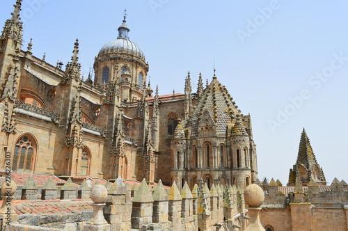 Foto op Plexiglas Monument Cathédrale de Salamanque