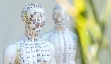 Männliches Und Weibliches Akupunkturmodell Vor Weissem Hintergrund Mit Grünen Blättern Im Vordergrund