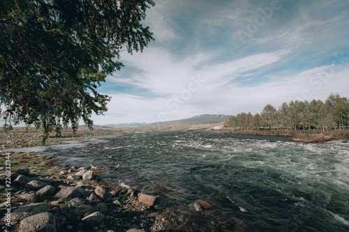 Staande foto Zwart landscape with mountains, forest and a river in front. beautiful scenery