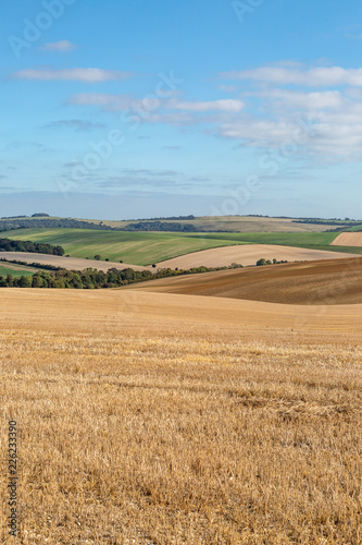 Patchwork fields in Sussex on a sunny autumn day