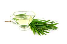 Isolated Melaleuca (Tea Tree) Essential Oil.