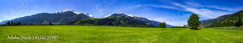 Foto op Plexiglas Panoramafoto s eine Panorama mit Bergen, Wald und Wiese in Österreich