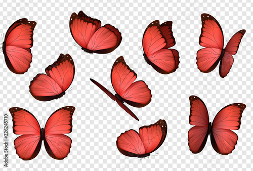 Fotomural Red isolated butterflies