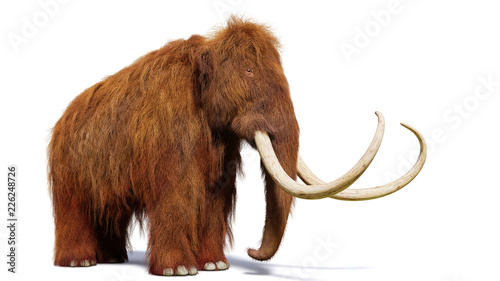 Photo  woolly mammoth, prehistoric mammal isolated with shadow on white background (3d