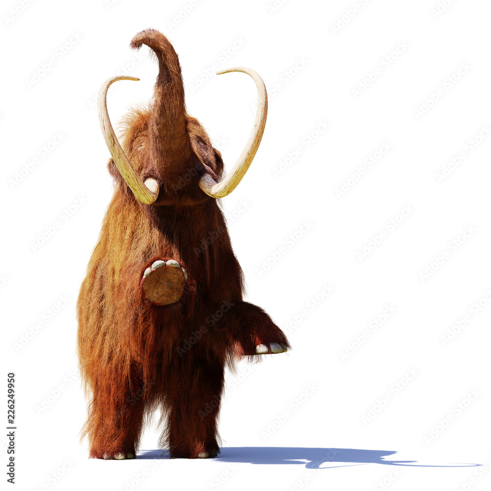 woolly mammoth standing on two legs, prehistoric mammal isolated with shadow on white background (3d illustration)