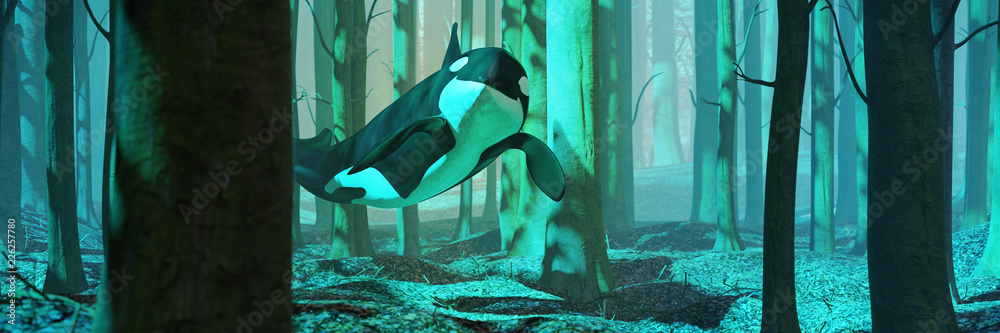 Fototapeta killer whale swimming in forest, orca flying in foggy landscape