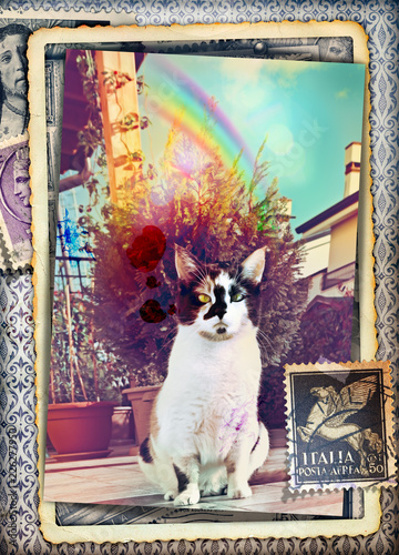 Foto op Aluminium Imagination Vecchia cartolina fotografica vintage con gatto in giardino e arcobaleno
