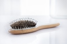 Hairbrush Covered With Hair