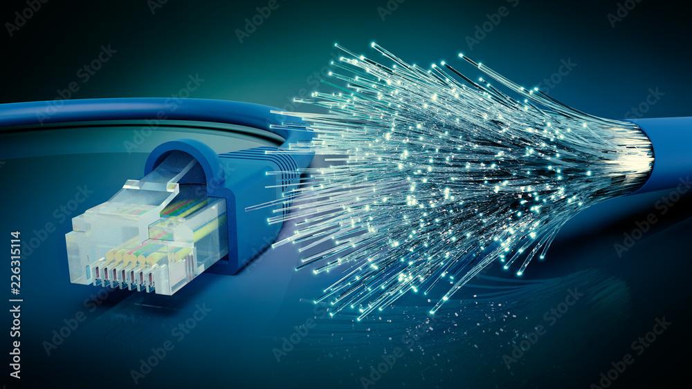 Fototapeta Netzwerkkabel und optisches Glasfaser Kabel, 3D Rendering