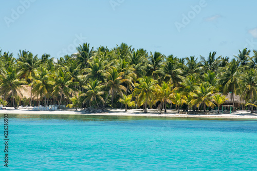 Foto op Plexiglas Caraïben Scenic beach of Saona island