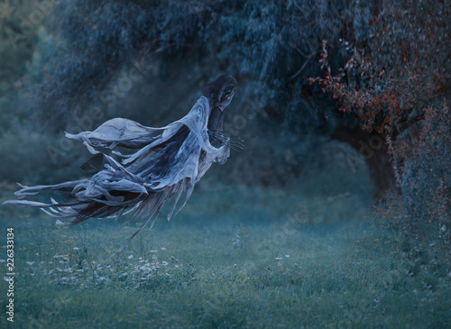 Photo dementor flies through the air with waving mantle into the forest above the lawn with emerald frozen grass covered with hoarfrost