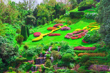Flower Garden And Waterfall At Doi Inthanon, Thailand