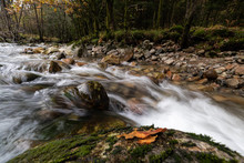 Slow Moving River During Fall.