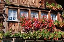 Blumenschmuck, Appenzeller Haus