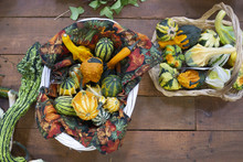 Pumpkins, Squash, And Gourd At...