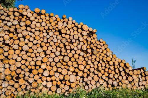 In de dag Brandhout textuur Tas de bois de chauffage