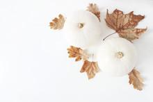 Autumn Composition. Decorative...