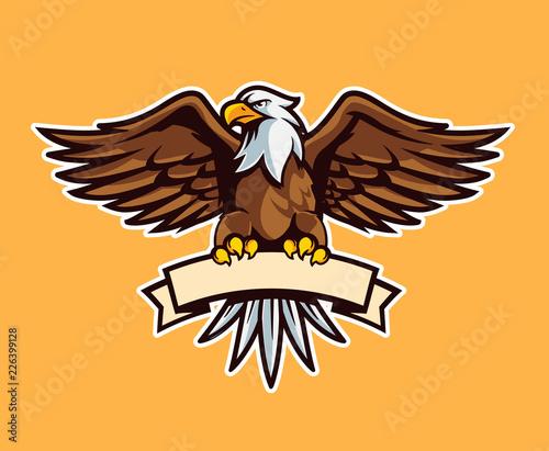 Fototapeta premium symbol orła
