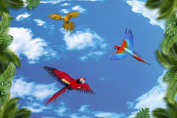 Naklejka Na szklane drzwi i okna 3d background, sky, palm trees, parrots