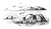 Sea Sketch With Rocks And Gulls. Hand Drawn Illustration Converted To Vector