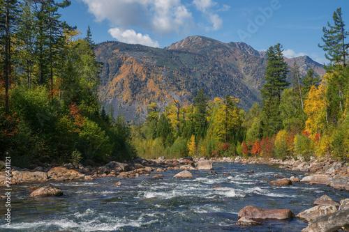 Autumn river Selenginka in mountains Khamar-Daban