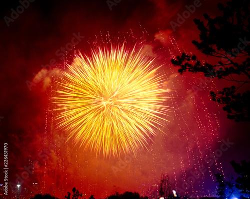 Photo  Firework at night