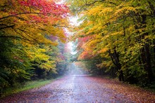 Road Scene In New England With...