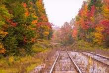 Old Train Tracks Surrounded By Fall Color In New England