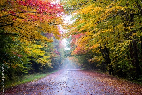 Road scene in New England with Fall color