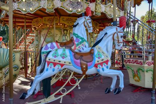 Fotografie, Obraz  Carousel