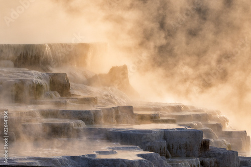 Steaming Mammoth Hot Springs During Sunrise At Yellowstone National Park