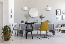 Black And Yellow Chair At Table In White Dining Room Interior With Plants, Lamps And Mirror. Real Photo