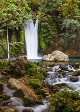 The Banias Nature Reserve At T...