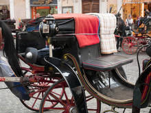 Horse And Typical Carriage Tha...