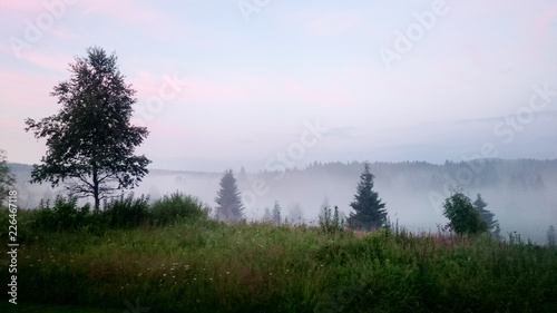 Photo Misty evening in Bohemian Forest. Czech Republic.