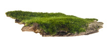 Green Moss On A Wooden Board Isolated On White Background. As An Element Of Packaging Design.