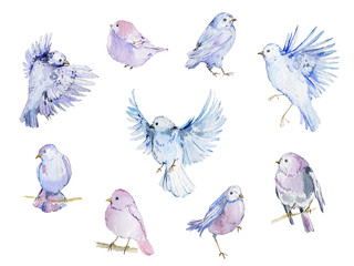 Watercolor birds collection...
