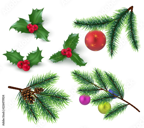 Christmas Branch Vector.Christmas Decoration Realistic Fir Tree Branches And Red