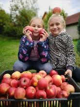 Deaux Filles Récolte De Pommes