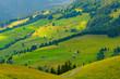 Summer landscape of Switzerland rural country side, near Habkern village
