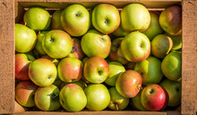 Texture Pattern Of Fresh Organic Apples In Wooden Crate.