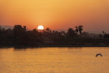 Sunset Over The Nile River In ...