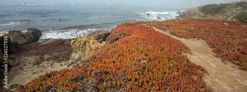 Foto op Aluminium Verenigde Staten Bluff hiking trail on Rugged Central California coastline at Cambria California United States